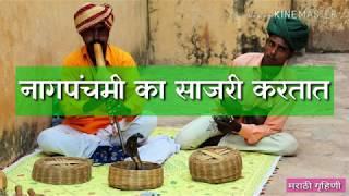 नागपंचमी का साजरी करतात - why celebrate Nagpanchami in marathi by Marathi Gruhini