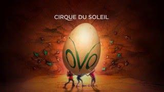 OVO by Cirque du Soleil - What's NEW on OVO: Acrobatics
