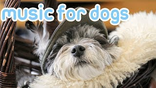 NEW Calming Music for Dogs! Relax Your Dog with Soothing Music! 2018!