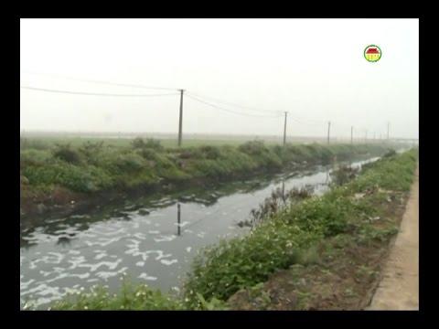 Xã Ngọc Lâm - Mỹ Hào nhiều người mắc bệnh do ô nhiễm môi trường