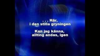 Kärleken Är - (gjord känd av Jill Johnson) - www.karaokebutiken.se