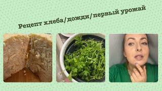 Рецепт хлеба дожди залили косметические новинки