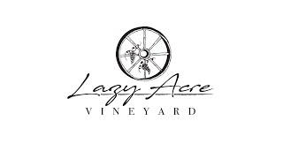 Lazy Acre Vineyard - Lake Mills, Iowa