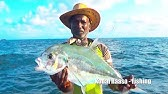 Let's Catch Some Diamond Trevally & Bludger (Fish) Catching at Deep Sea