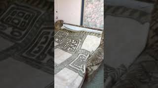видео Квартиры посуточно в Туапсе