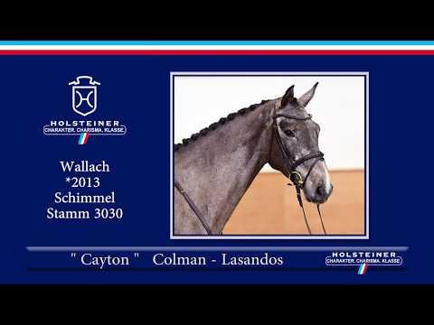 116 | Cayton v. Colman - Lasandos