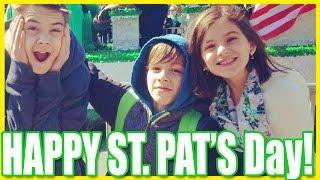 happy st patricks day kittiesmama