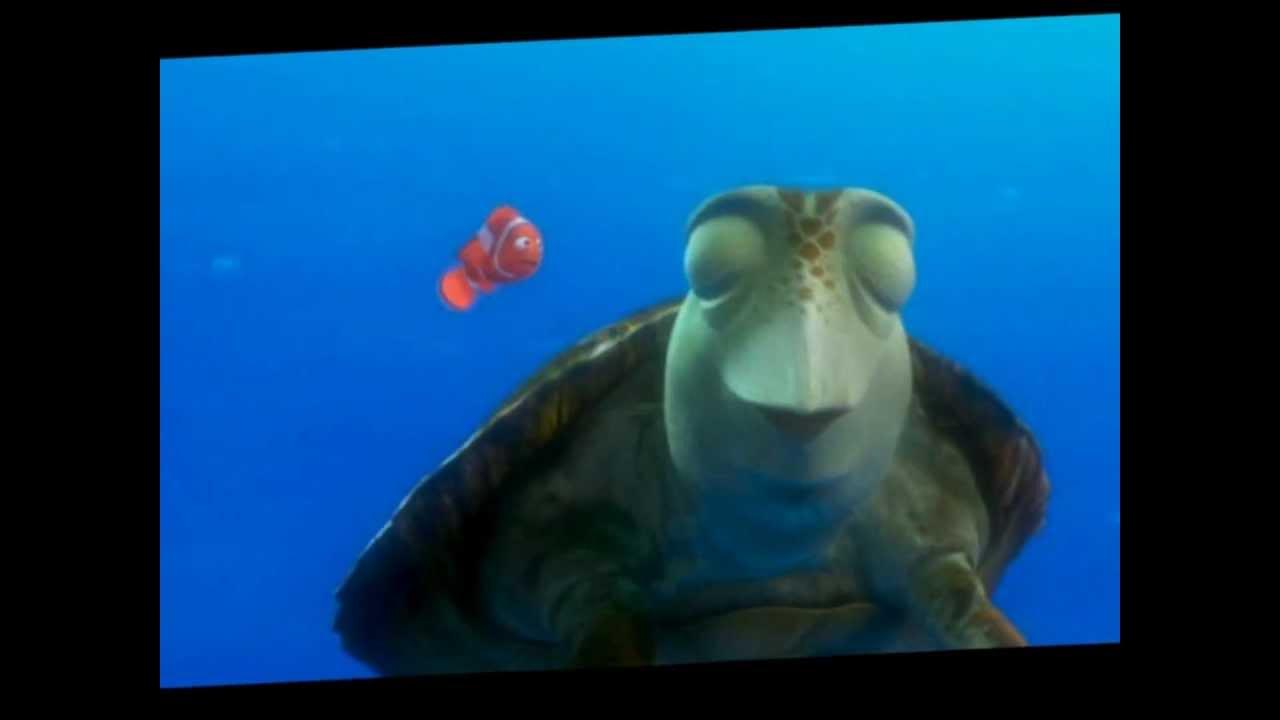 crush the turtle finding nemo youtube