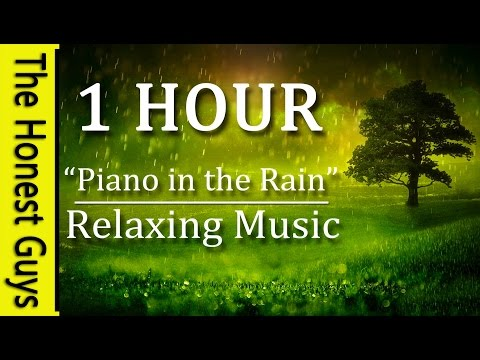 "1 Hour Relaxing Music ""Piano in the Rain"" Gentle Piano Music with Relaxing Nature Rain Sounds"