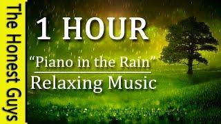 "1 Hour Relaxing Music ""Piano in the Rain"" Gentle Piano Music with Relaxing Nature Rain Sounds"