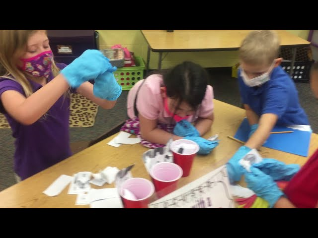 Moton 2nd Grade Place Value Hospital
