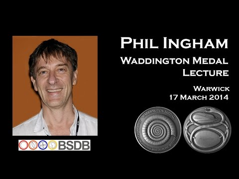 Waddington Medal Lecture- Phil Ingham