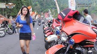 Harley Davidson SOLO TOUR JBR 2014
