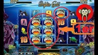 HAZARD? TRUCAGE? CHANCE? 🍻 des la 1ère partie de cette machine à sous Dolphin Gold 🎰