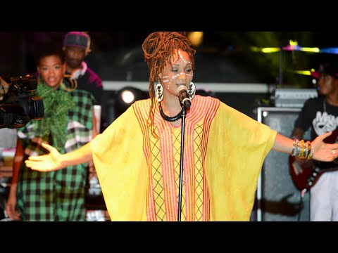 The 33rd Detroit African World Festival ft. Mama Sol and Tha N.U.T.S.