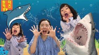 집에 상어가 나타났어요. 상어다 아기상어 상어 상어송 상어가족 낚시 Shark is coming & funny baby shark song l shark in my house