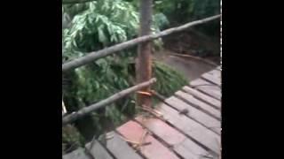 ВОДА СТРАШНАЯ СИЛА (Сороки,Тернопольская обл. Потоп)