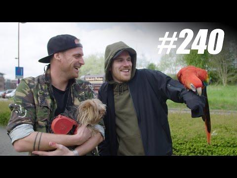 #240: Dieren Smokkelen [OPDRACHT]