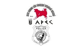 Ukrainian Police Dog Training
