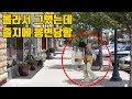 한국에서는 괜찮지만 미국에서 절대 하면 안되는 행동! 걸리면 경찰에게 체포됩니다.