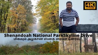 |  Skyline Drive | Shenandoah National Park| Amazing Fall Colors | 4k UHD |