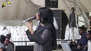 عشة الجبل - بشيركي - الطيب - معرفتك ماخسارة - اغاني سودانية 2020