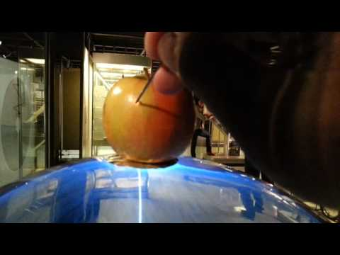 Engraving an apple using a plasma ball at Powerhouse Museum Sydney
