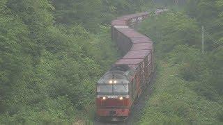 2019.08.25 撮影 DF200-1 石北貨物 玉ねぎ列車 ☆北鉄路漫582