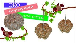 DIY ЭКО Кормушка для птиц/Съедобная кормушка/Birds feeder/Как сделать кормушку для птиц