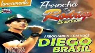 Baixar DIEGO BRASIL = DJ RODRIGO SAUDADE FILÉÉÉÉÉÉ