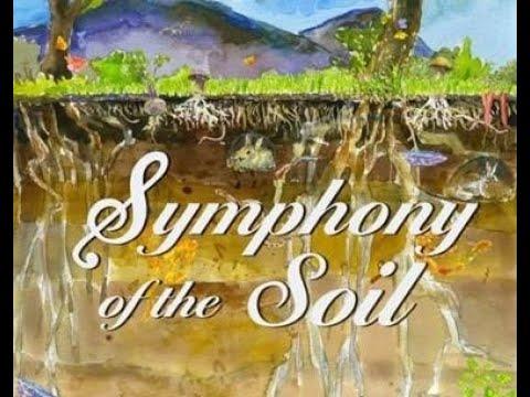 Symphony Of Soil