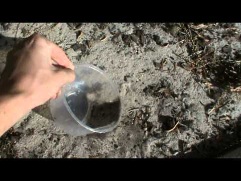 How To Fill up a Plastic Container with Sand