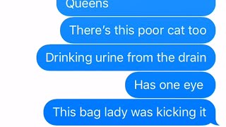 Texting story SAVE THE BLACK CAT - creepy
