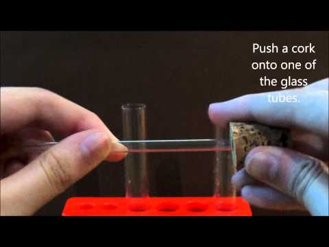 Science Experiment : Carbon Dioxide (Co₂) & Limewater (Chemical Reaction)
