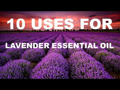 10-benefits-and-uses-of-lavender-essential-oil