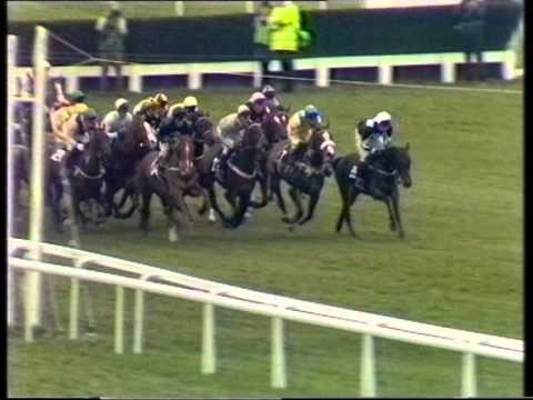1991 Daily Express Triumph Hurdle