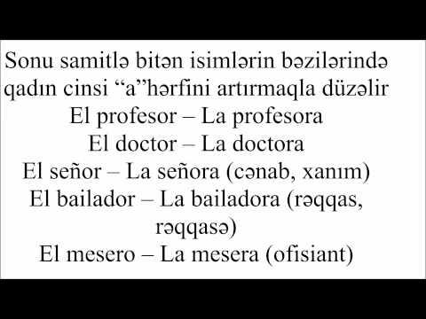 İspan dilinin qrammatikası Dərs 1 - İspan dilində cinslər