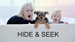 We Teach our PUPPY to Play HIDE AND SEEK!