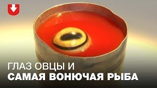 Самая отвратительная еда со всего мира — теперь в одном музее!