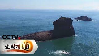 《生财有道》 20200730 生态中国沿海行——福建福鼎:美丽海岛宝贝多| CCTV财经 - YouTube
