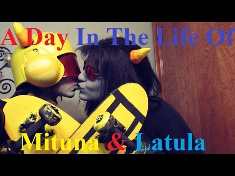 A Day In The Life Of Mitula