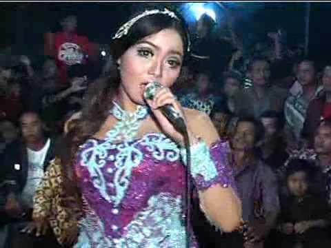 Suket Teki Areva Music Live Karangwuni
