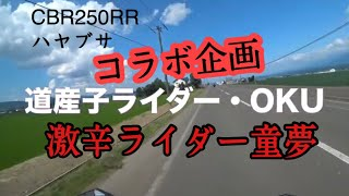 【コラボ企画】道産子ライダーOKU&激辛ライダー#神威岬#CBR250RR#隼 色々暴露
