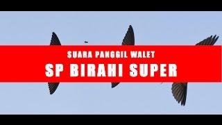 SUARA WALET SUPER | SUARA PANGGIL BIRAHI SUPER - FULL HQ AUDIO