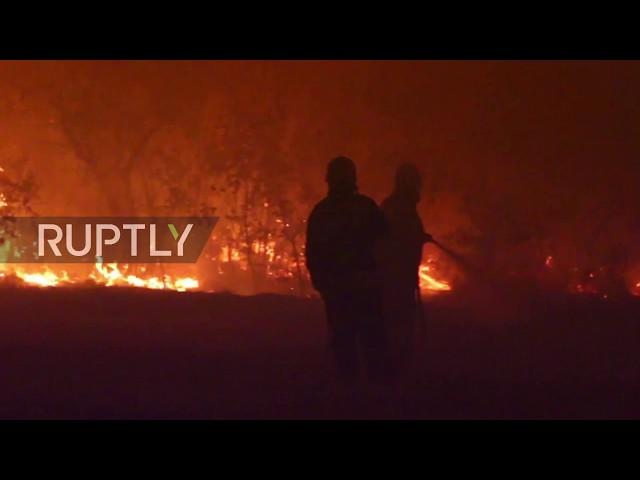 Russia: Kids' camp evacuated as forest fires ravage Volgograd region