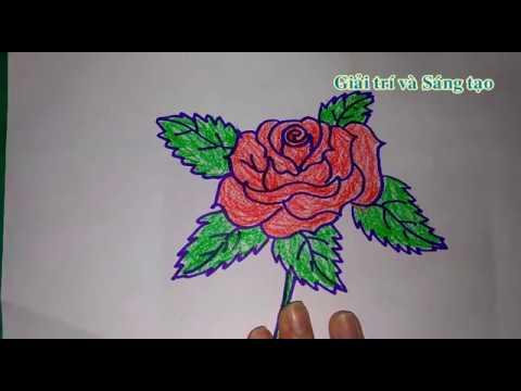 Vẽ hoa hồng đẹp và đơn giản
