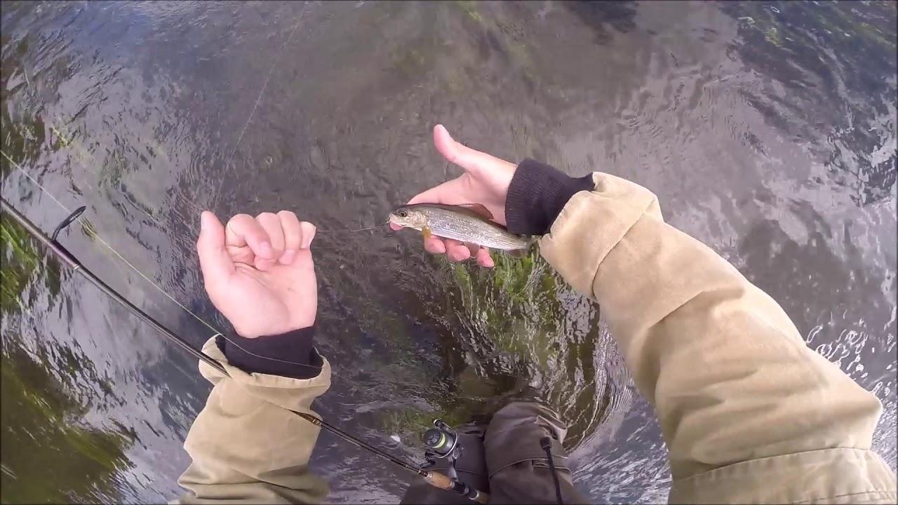 Эро видео рыбалка нахлыстом на малых реках мамочки
