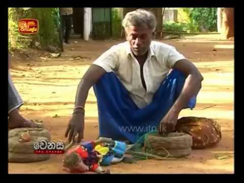 Sri Lankan Gypsy People (Telugu / Ahikuntaka / Kuravar)