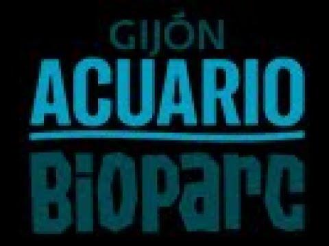 ACUARIO DE GIJON