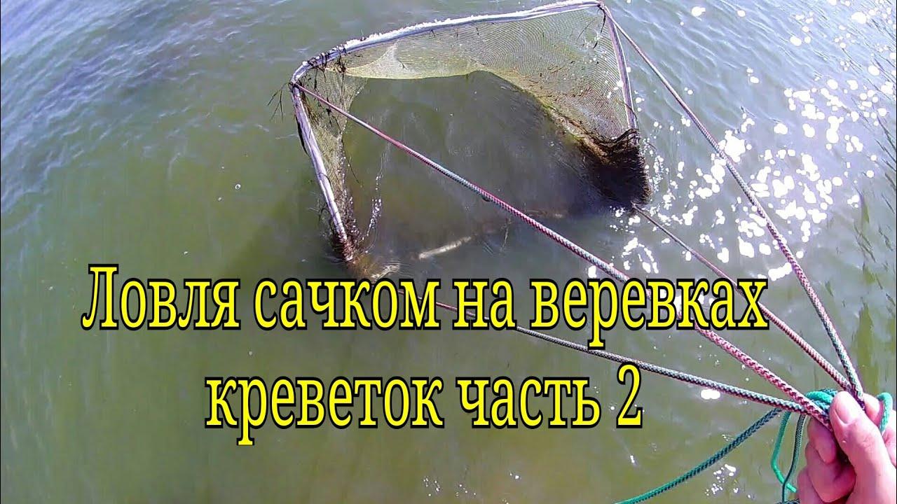 Ловля креветок в лимане осенью / Catching shrimp in the estuary in autumn